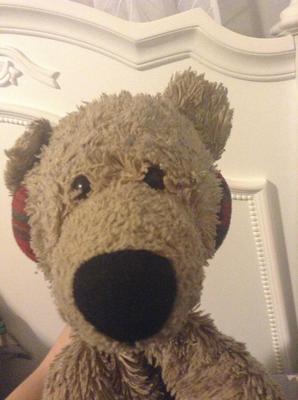 Saggy Old Bear close up of face