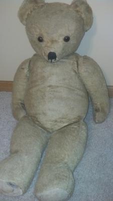 Unknown teddy bear