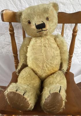 Teddy Bear sitting in a normal chair, May 2016