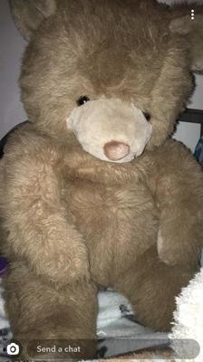 Teddy bear with fuzzy, light brown nose
