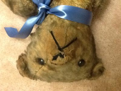 My great great great aunts bear close up of face