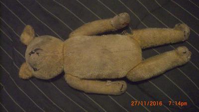 My Poor Little Teddy Bear
