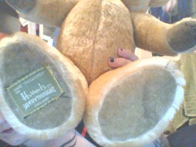 bottom of teddy bears feet