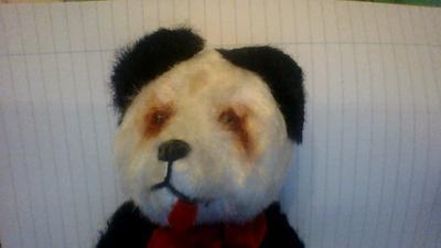 Old Panda Bear