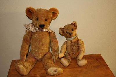 Two old teddy bears