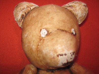 face of old weird bear