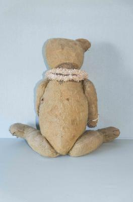 old bear back view