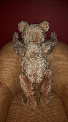 Old Large Teddy Bear back view