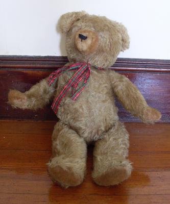 Possible Hermann bear