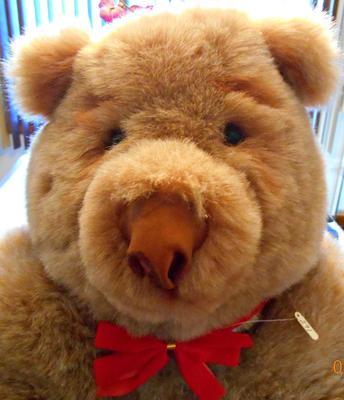 LArge Teddy bear face