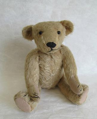 Front view of bear