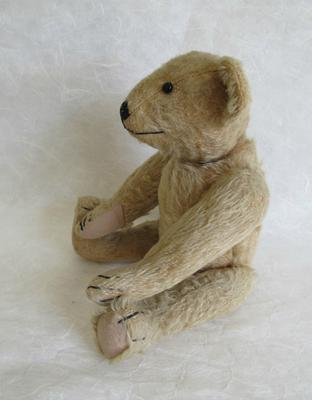 side view of bear