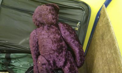 Purple Teddy Bear back view