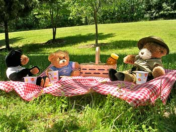 Teddy Bear Picnic picture by Vastateparksstaff