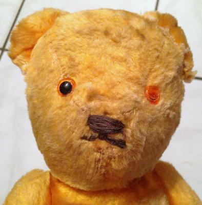 Sweet Old Bear face