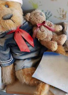 Teddy Bears with Chemicals on them