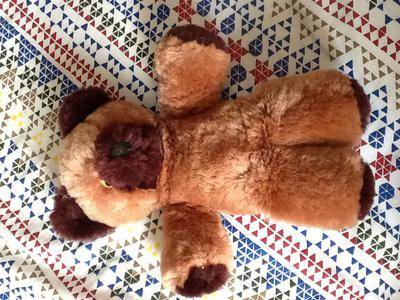 two tone teddy bear