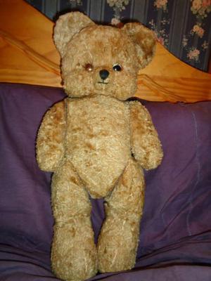 Weird looking bear
