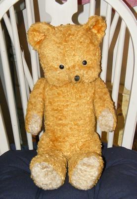 Weird looking bear sitting