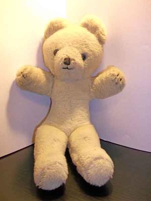 My White Teddy Bear