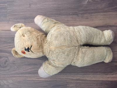 white Austrian Teddy Bear