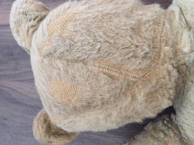 back of head white teddy bear