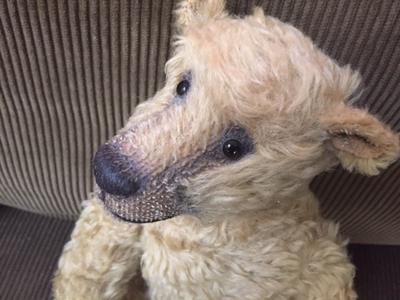 teddy bear with long snout