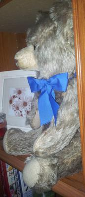 Side view of teddy bear with blue bear