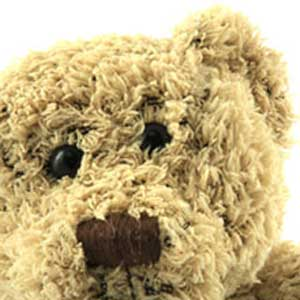 Brown Teddy Bears A Picture Gallery
